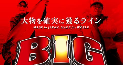 BIGラインシリーズ